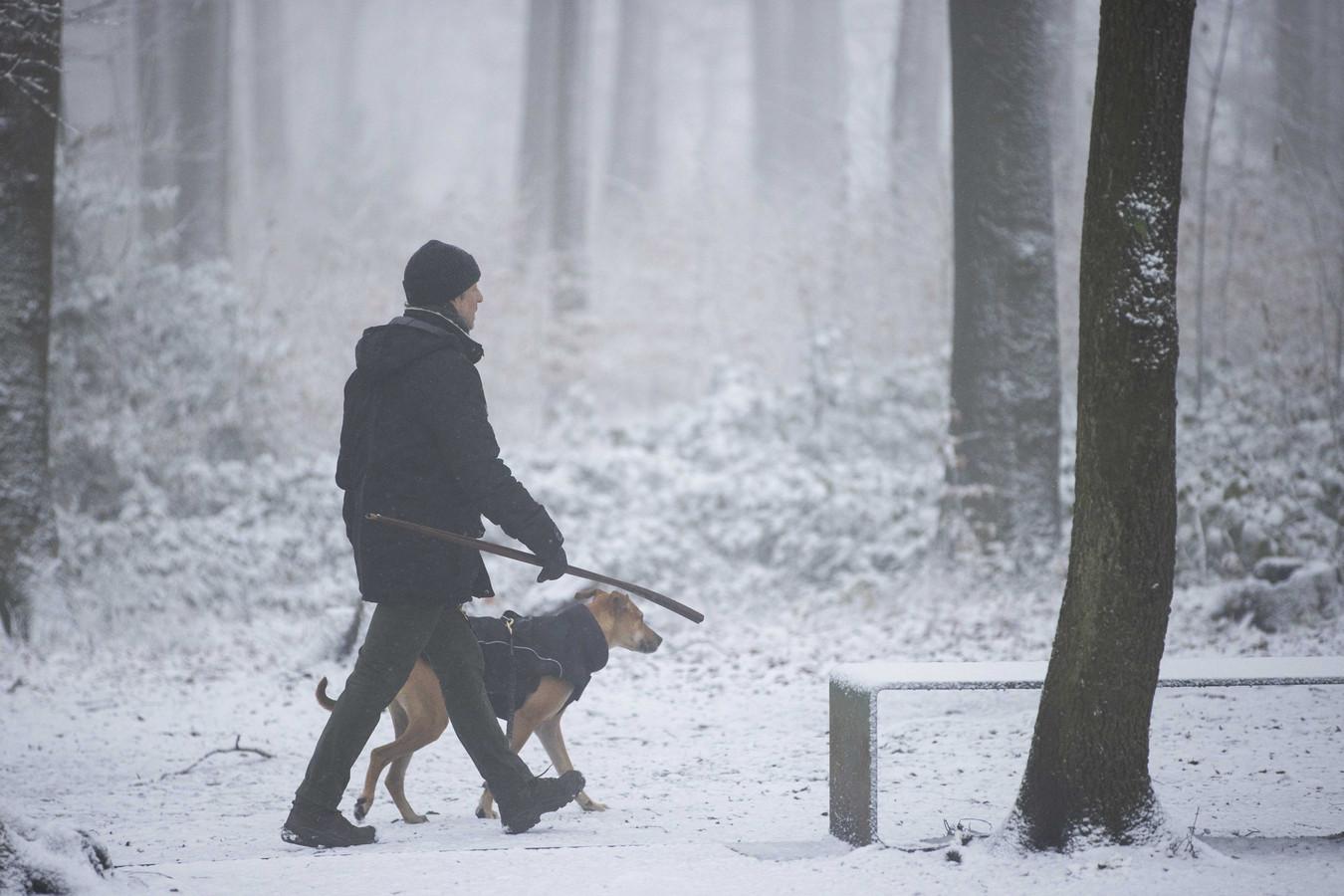 Een wandelaar met hond door de sneeuw bij Het Drielandenpunt in Vaals twee weken geleden.