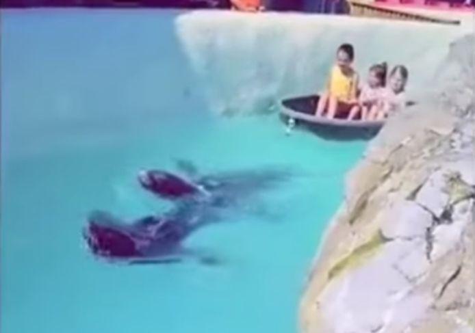 Dans la vidéo partagée sur Facebook, on peut voir deux otaries tirer un bateau dans lequel se trouvent trois enfants.