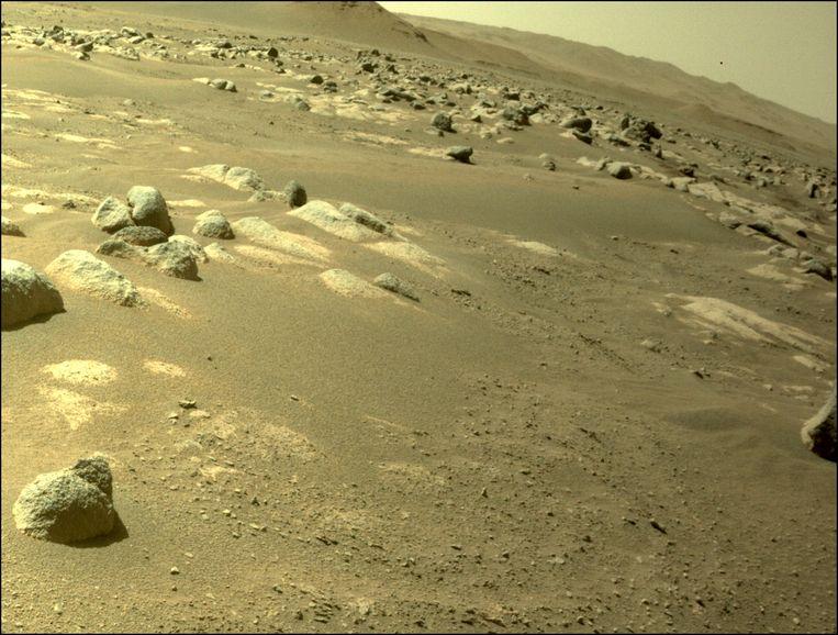 Deze foto van het Marsoppervlak liep eerder vandaag nog binnen. Beeld NASA/JPL-Caltech