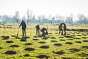 Archiefbeeld: begin 2019 werd er al eens 2 hectare bos aangeplant in de Vinderhoutse Bossen.