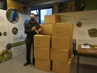 813 Hasselste scholieren dragen zorg voor vogels met voederbox tijdens koude winterdagen