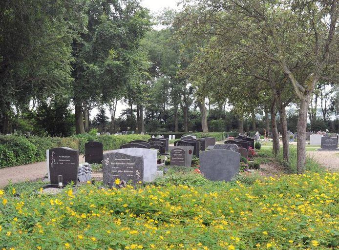 Begraafplaats Koudekerke. De gemeente Veere wil het onderhoud van de begraafplaatsen handhaven op het hoogste niveau. Om dat betaalbaar te houden overweegt de gemeente om gestapeld te gaan begraven. foto Ruben Oreel