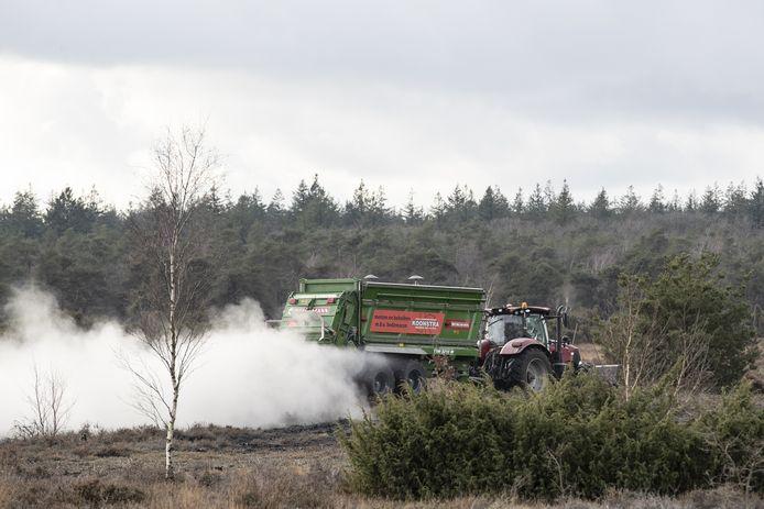 Bosbouwbedrijf Noest strooit het steenmeel uit over de heidegrond. Dan lijkt het of er sneeuw ligt in het natuurgebied...tot de regen zijn werk doet.