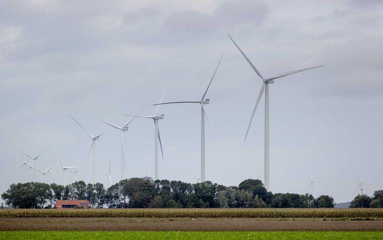 Het windpark in de Noord-Hollandse Wieringermeer bestaat uit 82 windmolens. Beeld ANP