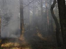 Deel bosbranden regio Boxmeer mogelijk aangestoken, extra toezicht in de bossen