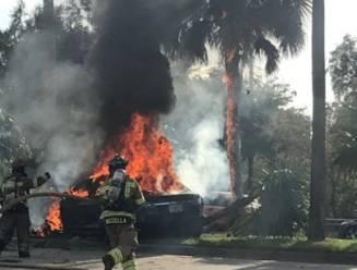 Man sterft in vuurzee na crash met Tesla, uren later vliegt de auto nog eens drie keer in brand