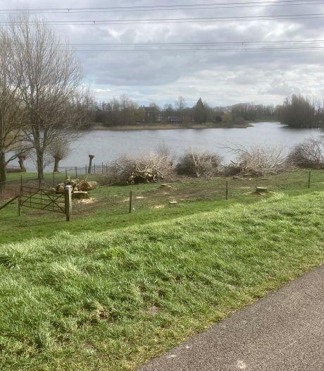 Woede over kappen 30 bomen in Groessens natuurgebied
