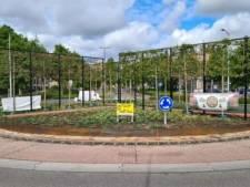 Alkmaarse en Haarlemse rotondes genomineerd voor titel 'Mooiste rotonde van Nederland'