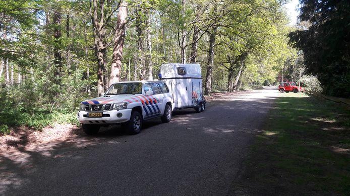 De politie zoekt donderdag opnieuw in de omgeving van de Elspeterweg waar woensdagmorgen de auto van de vermiste Ellen Hagenbeek is aangetroffen.