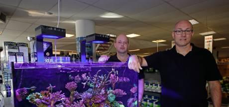Dierenzaak wil niet weg: Verhuizing van aquariumstellen kost vermogen