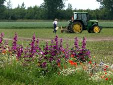 Deze boeren zetten zich in voor schoner water en meer biodiversiteit in de Hoeksche Waard