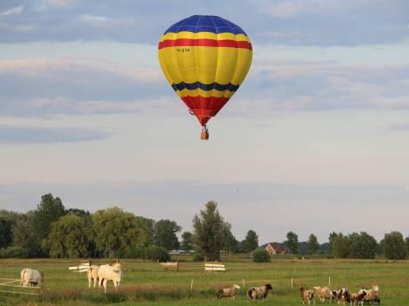 Paard dood na landing luchtballon: bedrijf moet 15.000 euro betalen