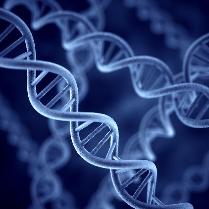 DNA-spiralen.