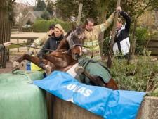 Paard vast in put Soest
