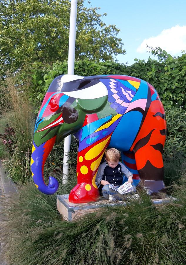 De eerste Elephant Parade in Ootmarsum viel vorig jaar ook in de smaak bij de peuters.