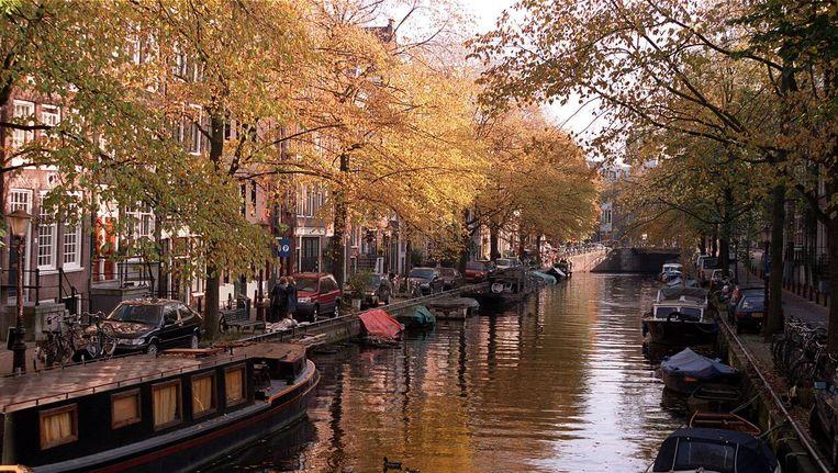 Herfstige kleuren in de stad Beeld anp