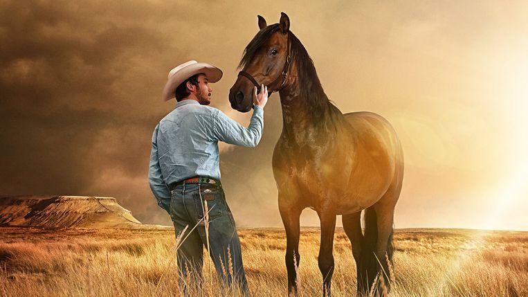 Brady Jandreau in The Rider. Beeld