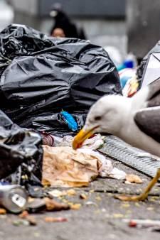 Den Haag wil meer heterdaadjes bij vuil naast container