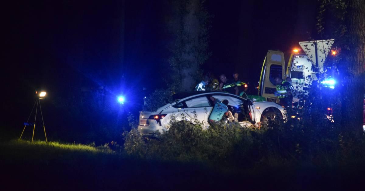 Dode en zwaargewonde bij botsing auto tegen boom bij Silvolde.