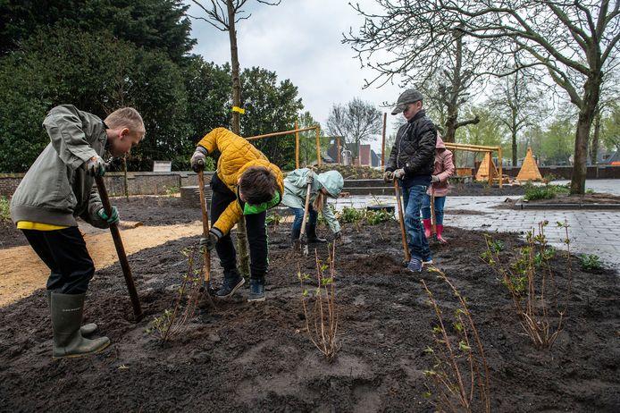 Steeds meer scholen kiezen voor meer groen op het schoolplein, zoals ook deze basisschool in Effen.