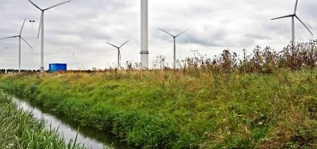 Zorgen over windmolens in Oranjepolder nemen toe