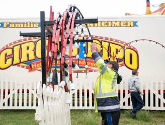Circus Pipo krijgt drie nachten op rij dieven over de vloer
