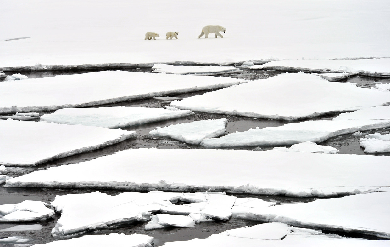 x Beeld TASS via Getty Images