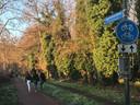 De Jagersboschlaan in Vught is nu een fietspad met een onverhard wandelpad en wordt intensief gebruikt door wandelaars en fietsers. De gemeente gaat de laan verharden en openstellen voor alle verkeer.