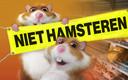 Na vijftien maanden keren de AH-hamsters weer terug.
