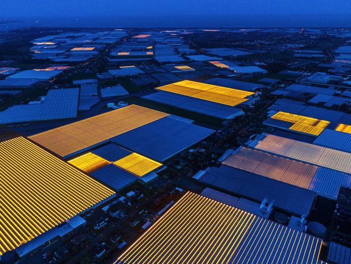 Kassen in het Westland in Zuid-Holland. Foto Luca Locatelli_voor National Geographic.