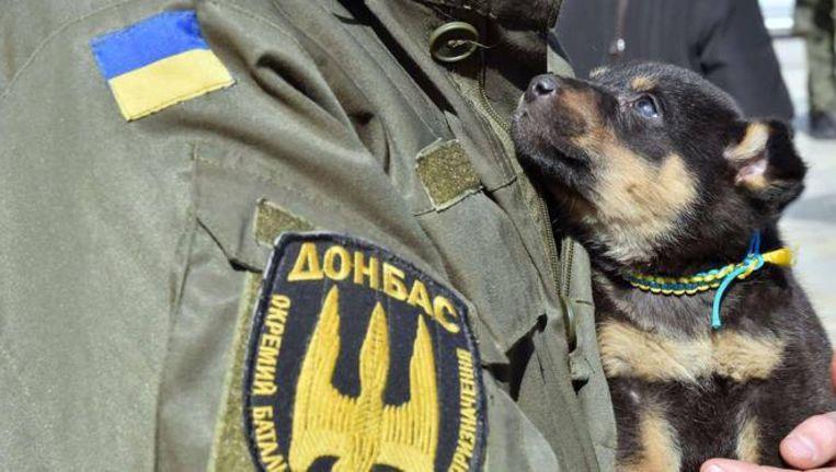 Een Oekraïense soldaat houdt een puppy vast tijdens een ceremonie in Kiev voor een bataljon vrijwilligers dat vertrekt naar het oosten van Oekraïne.