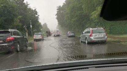 Regen leidt tot wateroverlast in Antwerpse Kempen: straten blank, kelders onder water
