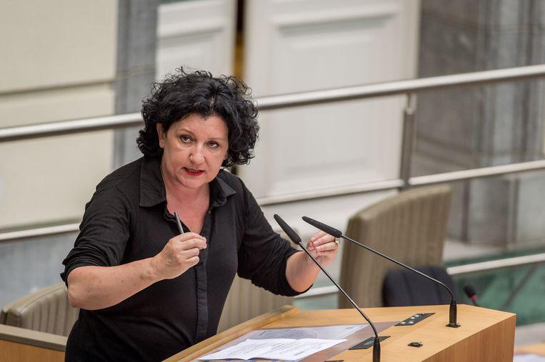 Vlaams minister van Energie, Annemie Turtelboom. Beeld BELGA