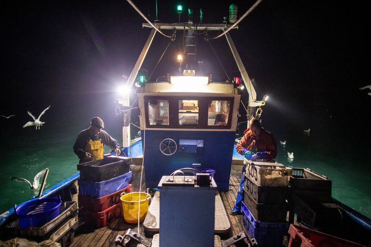 De Europese Commissie verwierp deze week een voorstel om de vangst van EU-vissers in de Britse wateren vanaf volgend jaar met 30 procent terug te schroeven. Beeld Getty Images