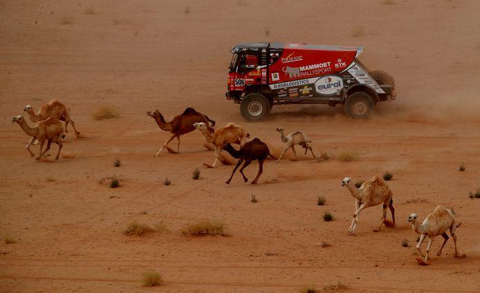 Martin van den Brink tijdens de Dakar Rally.