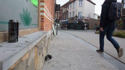 """""""Sint-Truiden, Hoofdstad van de Heroïne"""""""