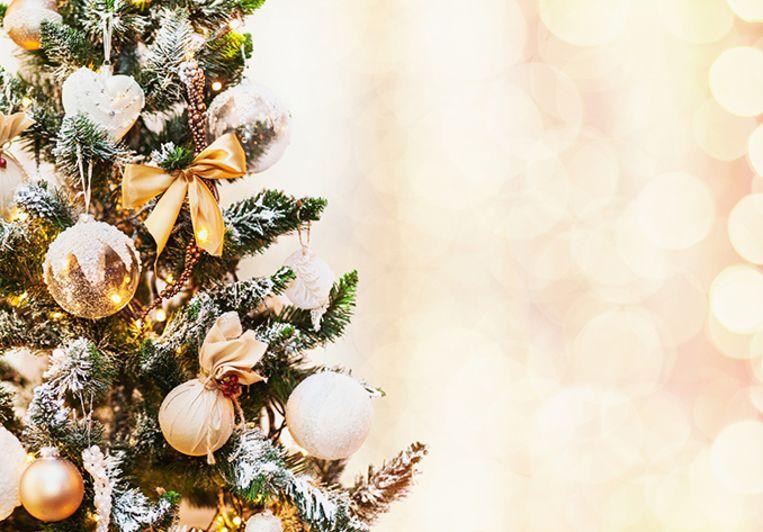 Veel Vlamingen gingen dit weekend kerstshoppen in tuincentra.