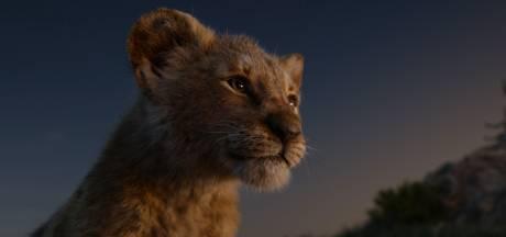 Le remake du Roi Lion, 2e plus gros succès en salles en Belgique derrière Titanic