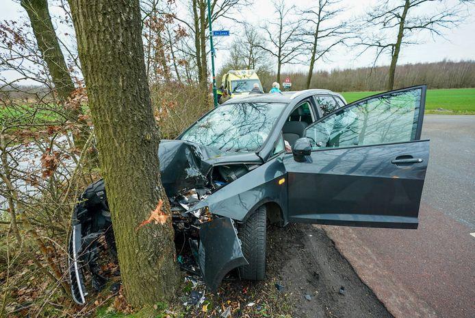 Een automobilist reed vrijdag tegen een boom in Driebergen.