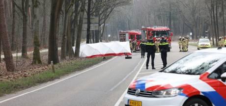 Auto botst tegen boom en vliegt in brand; bestuurder komt om het leven