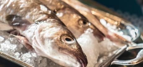Faillissement vishandel Nijverdal staat los van burgerrestaurant Wierden
