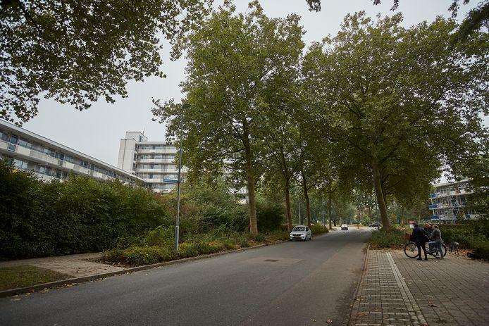 De Zutphense Beethovenstraat, waar woensdag een drugspand is gesloten door burgemeester Annemieke Vermeulen. Het is alweer de achtste keer dit jaar dat zij overging tot deze drastische maatregel.