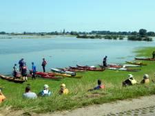 Kanoërs genieten in Zutphen van zeldzame hoogwatertocht op zomerse dag: 'Je vaart door de natuur heen, prachtig!'
