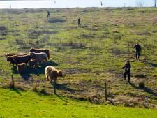 Hoogwater op komst: hooglanders worden vast geëvacueerd