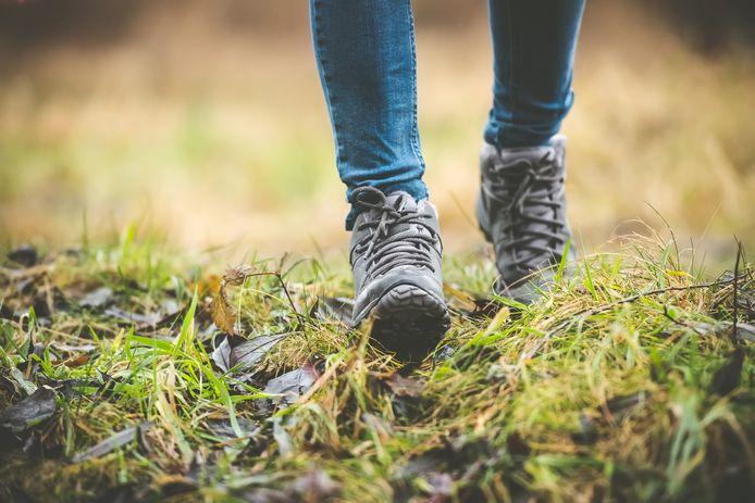 In Mariahout is het straks nog fijner wandelen, want de wandelpaden worden er de komende tijd verbeterd.
