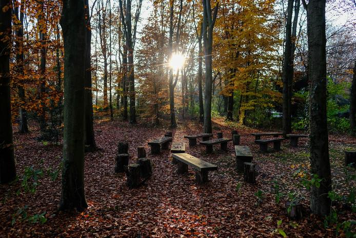 De natuurbegraafplaats op de Slangenburg wordt uitgebreid. Foto: Jan van den Brink