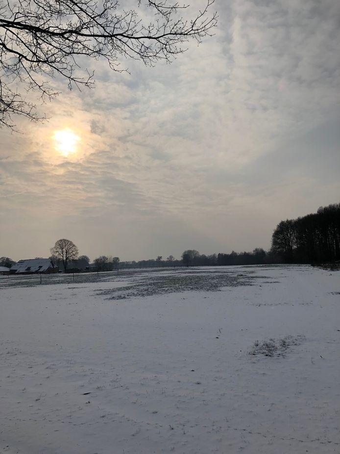 Een echt winters zonnetje in Grave.
