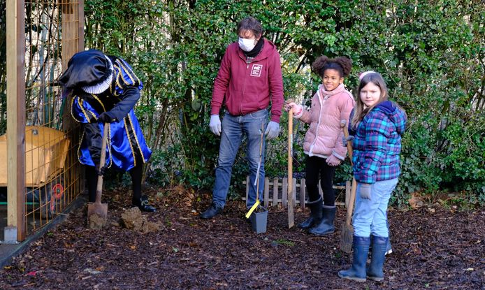 Zwarte Piet stak meteen een handje toe bij de boomplantactie in de school.