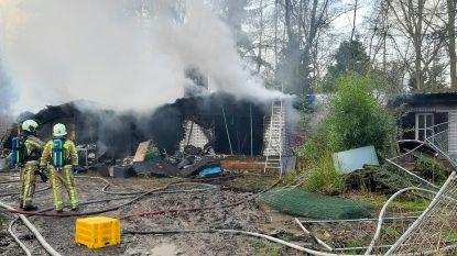 Chalet gaat in vlammen op: brand mogelijk aangestoken door twee jongens van tien