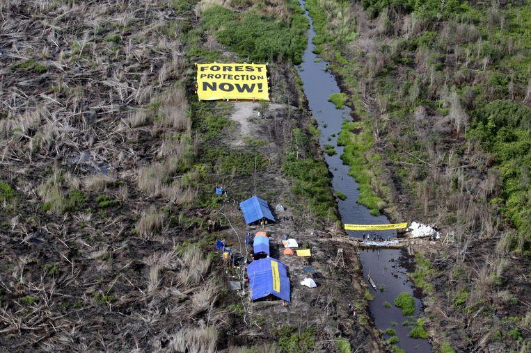 Greenpeace-activisten protesteren met een reusachtig doek, op een platgebrand stuk grond. Beeld EPA